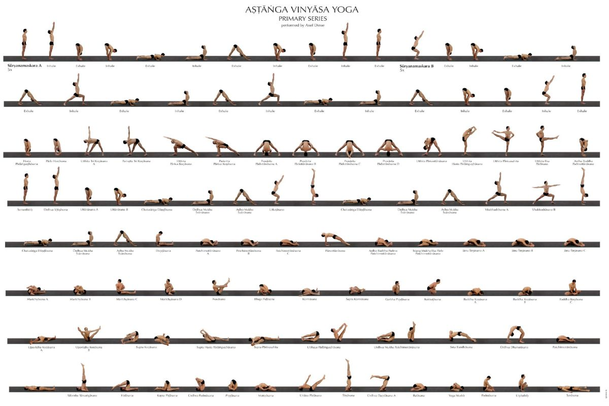 Ashtanga Yoga Primary Series Poster Daily Cup Of Yoga